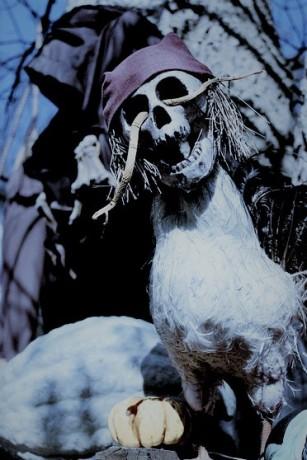 halloween-177886_960_720